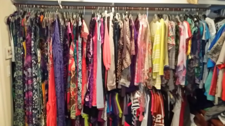 Pairing Down Clothes - organized hanging closet after storing off-season and donating
