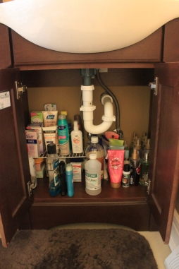 Organizing For Every Room!- organized under the bathroom sink