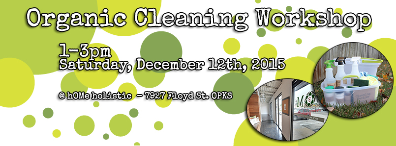 Organic Cleaning Workshop